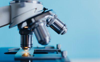 La tutela delle invenzioni biotecnologiche